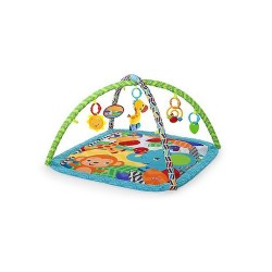 BRIGHT STARTS CHARMING CHIRPS ACTIVITY GYM  image here