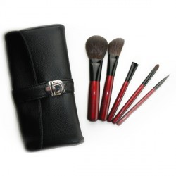 5PCS BRUSH SET image here