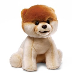 "Gund – Boo Plush Stuffed Dog 9″ Toy – ""The World's Cutest Dog"" image here"
