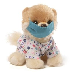Gund – Itty Bitty Boo Scrubs Stuffed Dog 5″ Plush image here