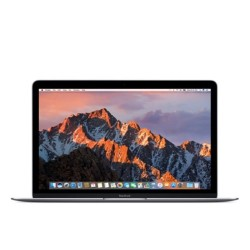Apple Store,12-inch MacBook: 1.2GHz dual-core Intel Core m3, 256GB - Space Gray,MNYF2PP/A image here