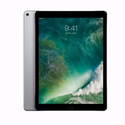 12.9-inch iPad Pro Wi-Fi + Cellular 256GB - Space Grey image here