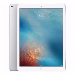 Apple Store,12.9-inch iPad Pro Wi-Fi + Cellular 256GB - Silver,MPA52PP/A image here
