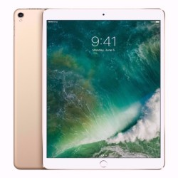10.5-inch iPad Pro Wi-Fi + Cellular 256GB - Gold image here