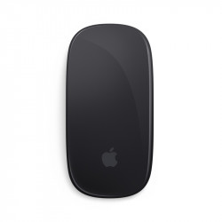 Apple Store,Mac Magic Mouse 2 - Space Gray MRME2ZA/A,MRME2ZA/A image here