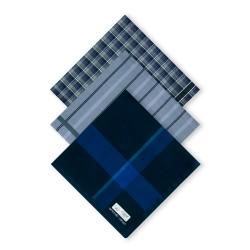 Armando Caruso, WOVEN HANDKERCHIEFS, Blue, WOVEN-2 image here