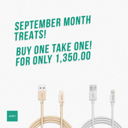 Buy One Take One for the Month of September image here