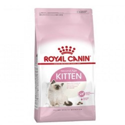 Royal Canin,Feline Kitten 10Kg,973 image here