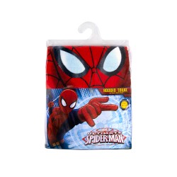 Marvel Avengers Spider Man  Drying Hoodie image here