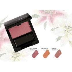 Perfect Glow Mineral Blush image here
