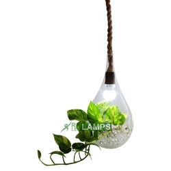 LARGE GLASS TEARDROP HANGING FLOWER VASE image here