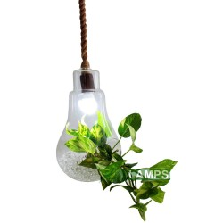 RHLED LAMPS,  GLASS BULB HANGING FLOWER VASE,  PV3150 image here