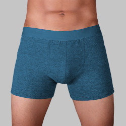 WALKER CLASSIC BOXER BRIEF (ACID BLUE) image here