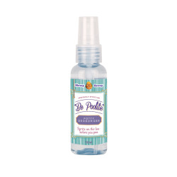 Messy Bessy Be Poolite Deodorizer 50ml,blue,CL-BPLX50 image here