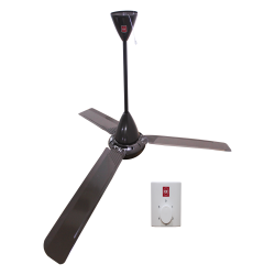 ceiling fan M48XG image here