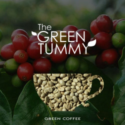 Arabica Green Coffee TRIAL PACK 100G image here