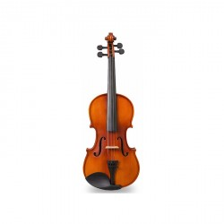 VIOLIN 4/4 COMBOS (NATURAL)   image here