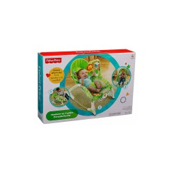 FISHER PRICE RAINFOREST NEWBORN TO TODDLER ROCKER image here