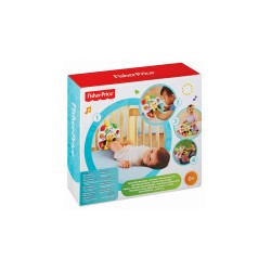 FISHER PRICE GROW WITH ME PIANO image here